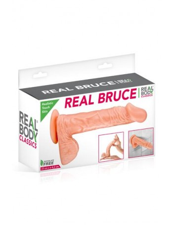 REAL BODY BRUCE